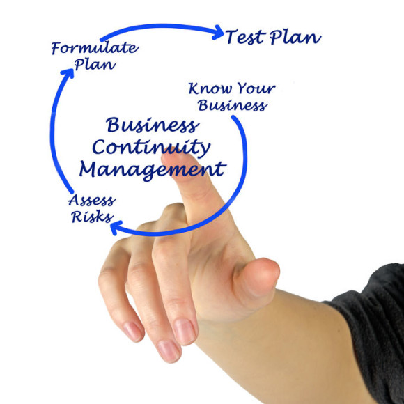 34163755 - business continuity management